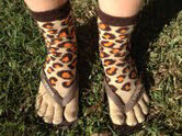 Ugg Boots...Tropical North Qld Style