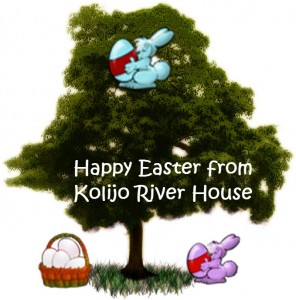 Happy Easter from Kolijo Tree