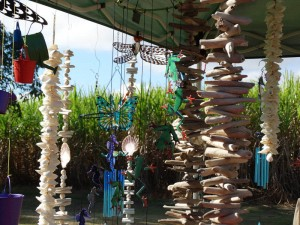 Wind-chimes among the Sugar Cane